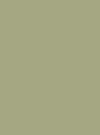 Roheline Mähkmetort Pardiga